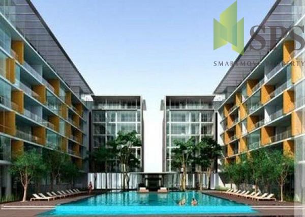 ficus-lane-condo-bangkok-51199a84ef23779a61000308_full