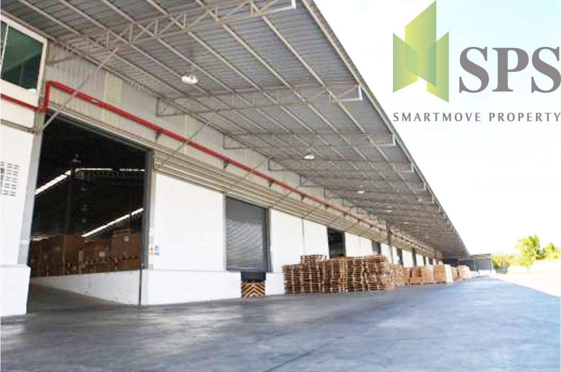 FOR RENT Warehouse at Siracha, Chonburi คลังสินค้าศรีราชาชลบุรี (SPSCS073)