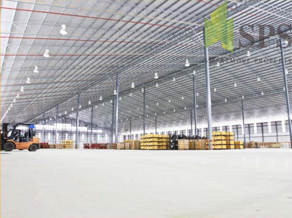 FOR RENT Warehouse at Siracha Chonburi คลังสินค้าศรีราชาชลบุรี (SPSCS074)