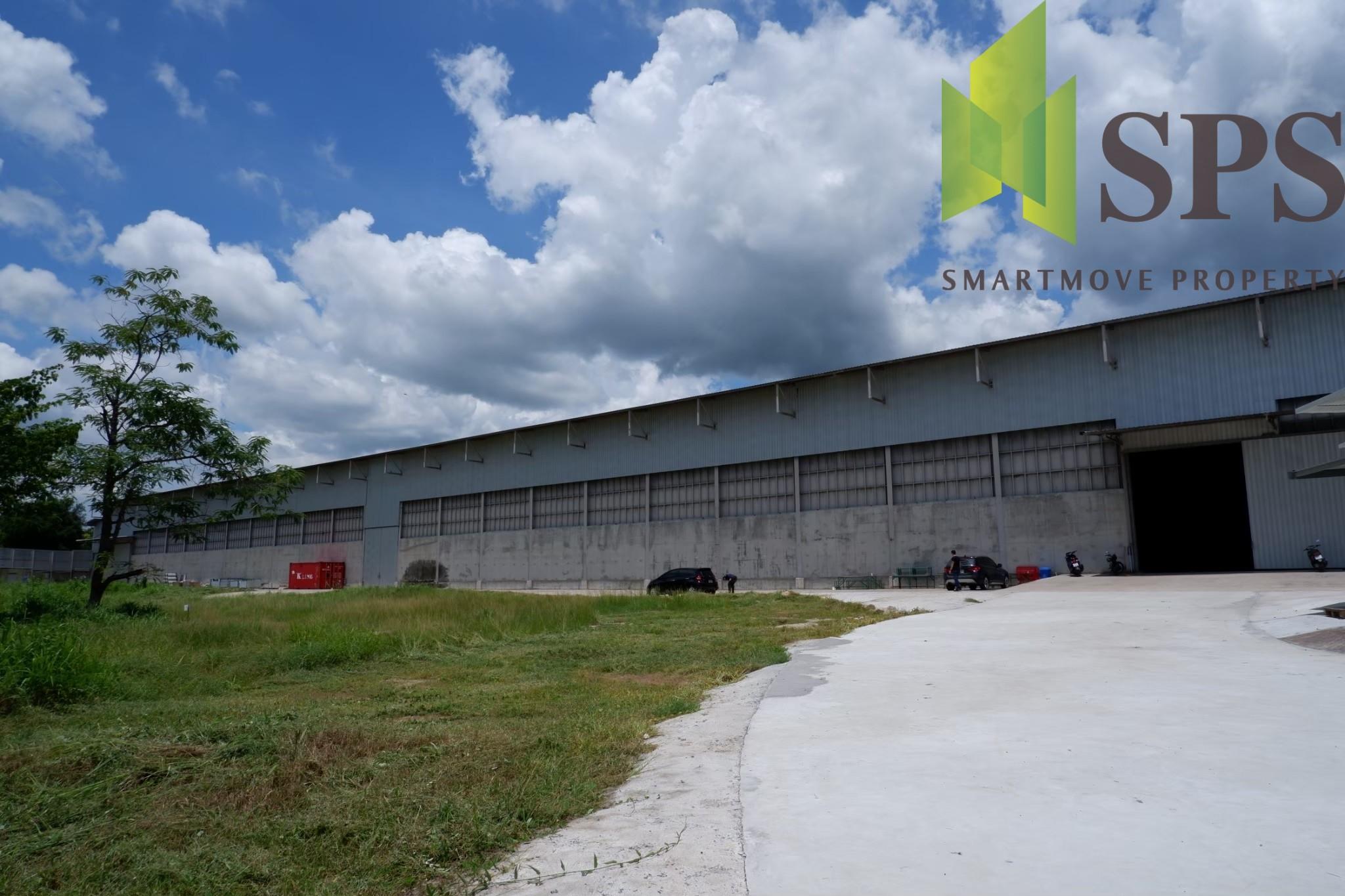 Warehouse Chonburi RENT/SALE ชลบุรี หนองรี (ที่ดินสีเหลืองอ่อน)(SPS-GW428)